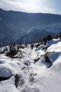 neige et bois